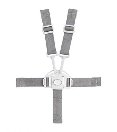 Boon Flair Harness/Buckle