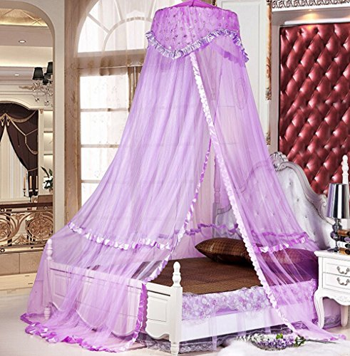 Sinotop Luxury Princess Bed Net Canopy ... & Sinotop Luxury Princess Bed Net Canopy Round Hoop Netting Mosquito ...
